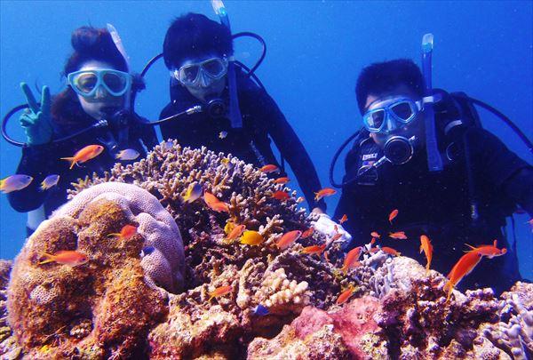 【石垣島・体験ダイビング】1度に潜るのは2名様まで!きめ細かいサポートが魅力です