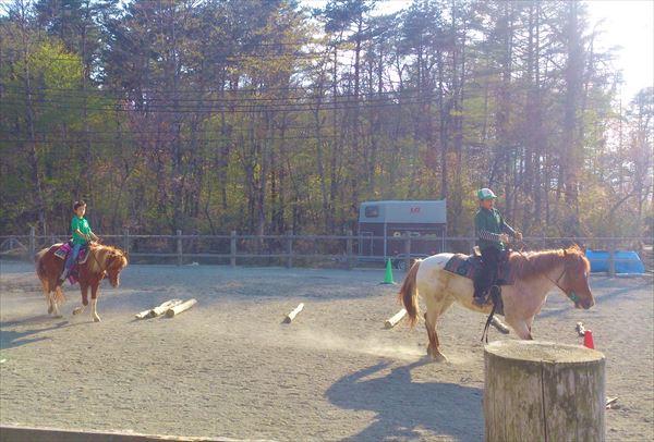 【山梨・山中湖・20分・体験乗馬】馬と一緒に馬場を歩こう。20分体験乗馬プラン