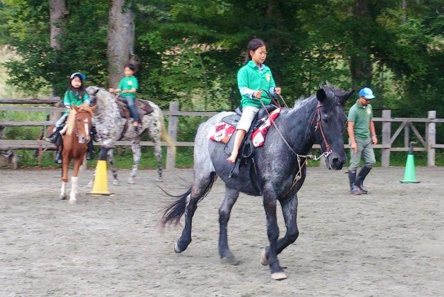 【山梨・山中湖・40分・体験乗馬】馬の背に乗って、歩いたり走ったり。レッスンつき乗馬体験