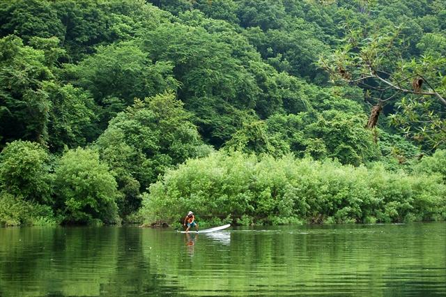 【半日・ニセコ尻別川SUPツアー】透明度の高い清流でSUPを体験しよう!