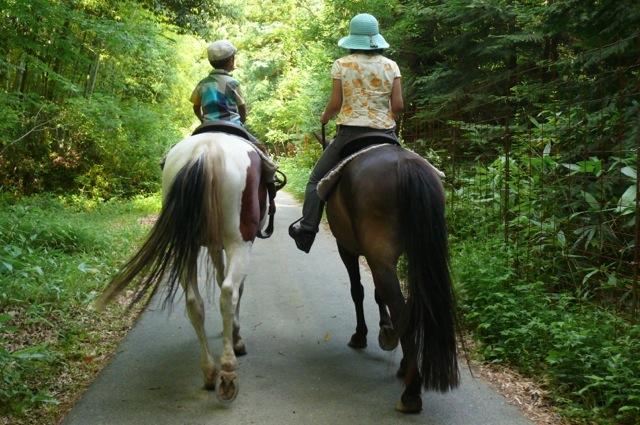 【広島・安芸・15分・乗馬体験】馬のスピード感を体験できます!15分速足プラン