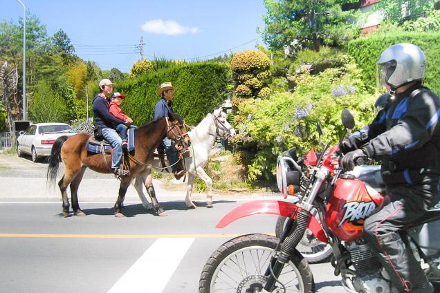 埼玉・秩父・乗馬体験(60分・公道を馬とおさんぽ)