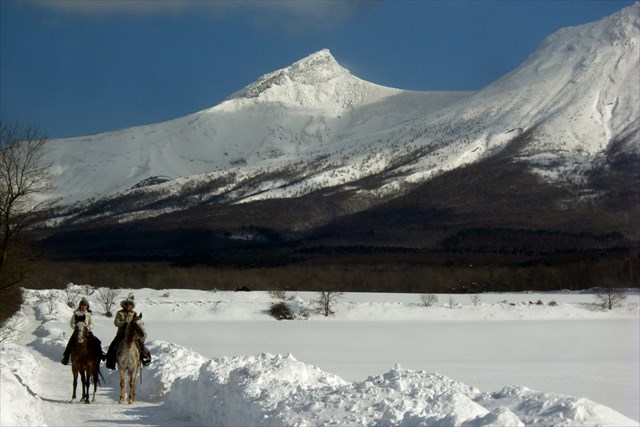 【北海道・乗馬体験】ウエスタンホースと駒ヶ岳ホーストレッキング!サンドイッチ付3時間半プラン