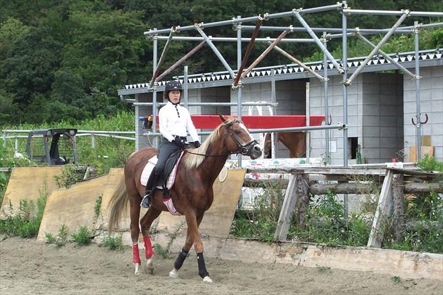 【奈良県・乗馬体験】まずは馬に乗ってみよう!30分乗馬体験プラン
