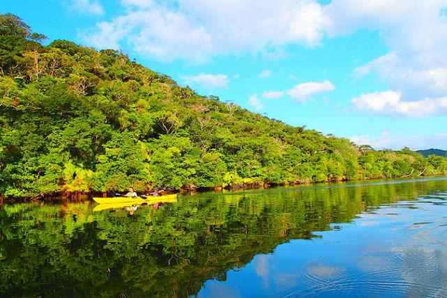 【西表島・カヌー】川下りと沢登りで、癒し効果抜群!西表島でカヌー&シャワートレッキング