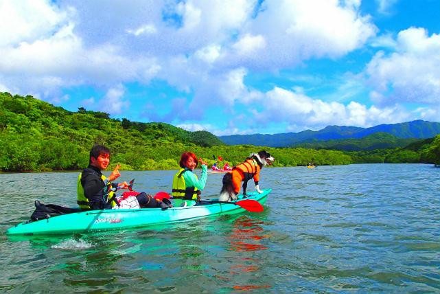 【西表島・カヌー】人気ナンバーワン!まるごと西表島を楽しめる、欲張りジャングル冒険ツアー