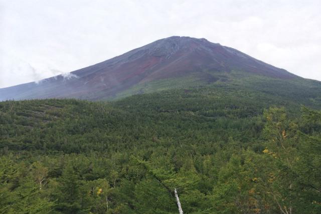 【富士山・登山ツアー】富士山をぐるりと回る!富士山五合目『御中道』コース