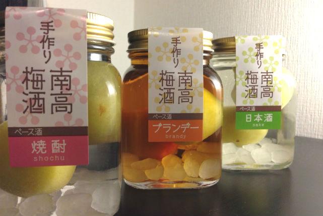 【和歌山・梅酒作り】他では味わえない!ここだけのちょっぴり大人の梅酒作り体験