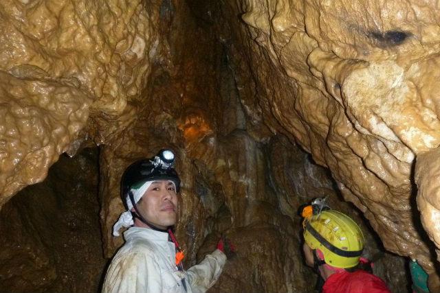 【滋賀・多賀町・洞窟探検】気軽に鍾乳洞を探検!レベル1・ケイビング滋賀コース