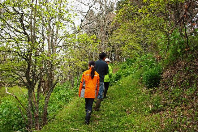 【北海道・ガイドツアー・2時間】命の季節を実感!春の霧多布湿原ツアー・レギュラーコース