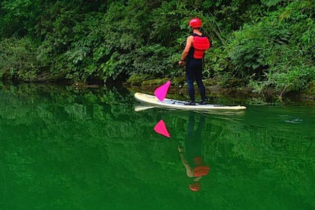 【高知県・吉野川・SUP】初心者大歓迎!自然豊かな吉野川でSUP体験(10:00・13:00コース)