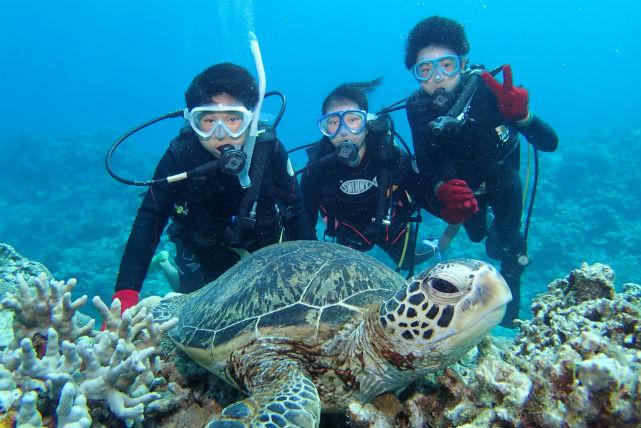 【沖縄県・体験ダイビング・1日】慶良間の海の美しいコントラストに包まれて、心身を解放!