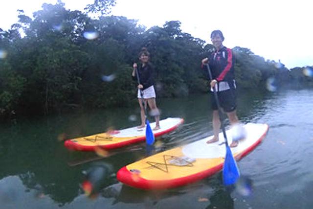 【石垣島・SUP】SUPと体験ダイビングが楽しめる!マングローブ林と海を冒険
