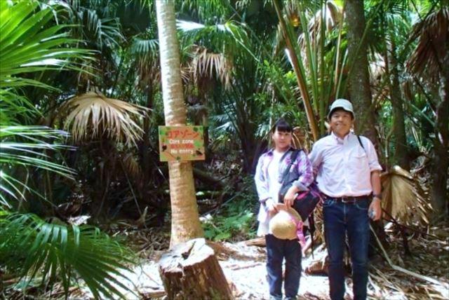 【小笠原父島・森歩き1日】「東洋のガラパゴス」の森で、植物と出会う森歩き