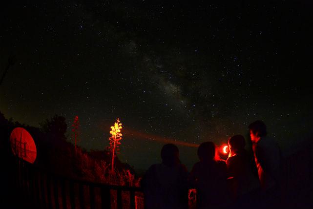 【小笠原・ナイトツアー】こんな星空見たことない!星降る夜を満喫するナイトツアー