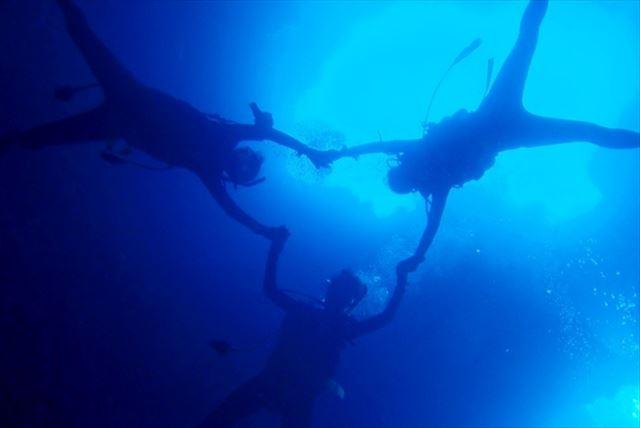 【福岡・ダイビング&シュノーケリング】愛嬌たっぷりなイルカと一緒に泳ごう!イルカ島ツアー
