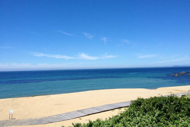 【福岡・体験ダイビング】マイペースに初ダイブ!たくさんの熱帯魚に会いにいこう