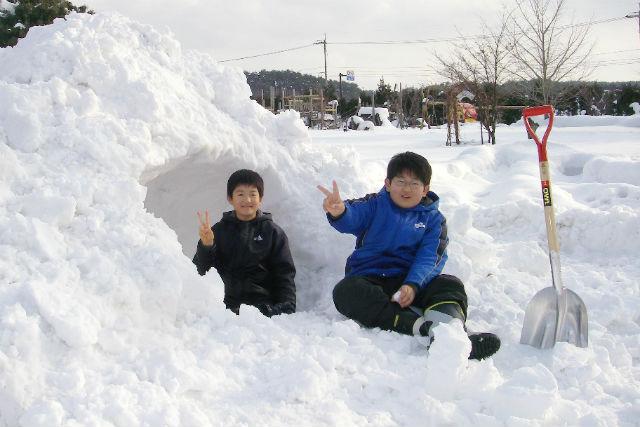 【鳥取・大山・スノーシュー】スノーシューやソリ滑りを楽しもう!雪遊び満喫パック