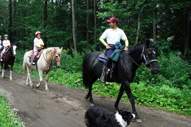 【北海道苫小牧・体験乗馬】おいしいランチも、本格的な乗馬も!ハッピーライディングプラン