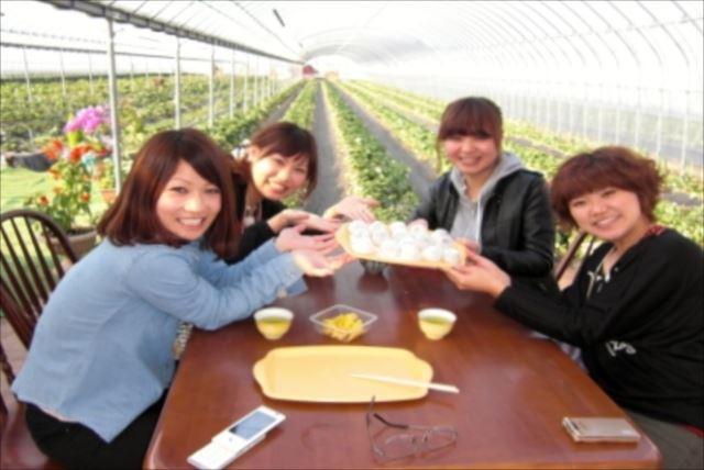 【鹿児島県・料理体験】もぎたて果実でクッキング!イチゴ大福orジャムを作ろう