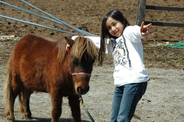 【山梨・八ヶ岳・乗馬体験】初めての乗馬に!乗馬教室ベーシックプラン(半日)