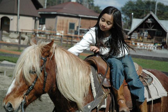 【山梨・八ヶ岳・乗馬体験】馬と友達になろう!乗馬教室ベーシックプラン(1日)