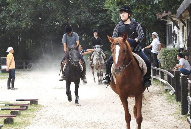 【北九州・乗馬体験45分】小学生から参加OK!初めての乗馬体験