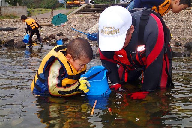 【秋田県・男鹿半島・エコツアー】海が教えてくれる海辺のようちえんで命の尊さを学ぼう
