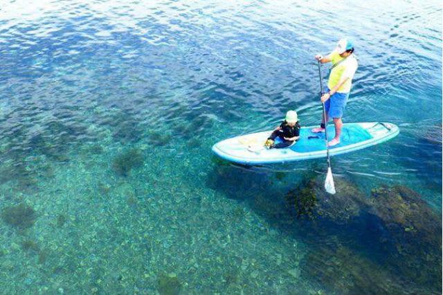 【徳島・SUP】透明度の高い海でクルージング!初心者大歓迎のSUP体験