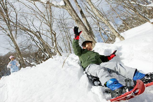 【岐阜県高鷲・スノーシュー体験】ダイヤモンドのような雪景色!長良川源流で森のゆったり散歩
