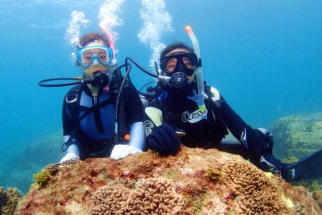 【宮崎市・2ボート・ファンダイビング】宮崎のおだやかな海に潜ろう!2ボート・ファンダイビング