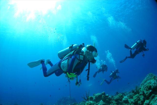 【岡山・スキューバダイビング】感動と神秘の海の世界へ!Cカード取得コース
