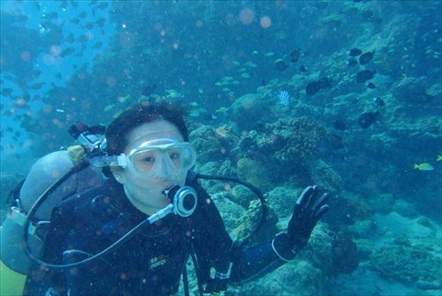 【鹿児島・加計呂麻島・ファンダイビング】たっぷり海で過ごせる、2ダイブプラン