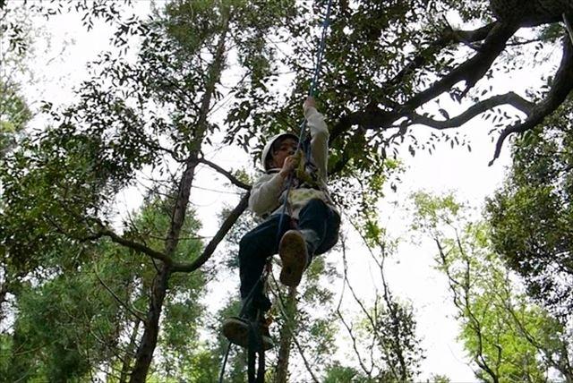 【千葉県長生郡・木登り】大人も童心に返る面白さ!ツリークライミングで自然と一体になろう