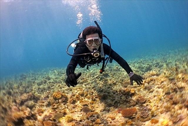 【奄美大島・体験ダイビング・半日】初心者大歓迎!奄美の海を気軽に楽しむ体験ダイビング(ボート)