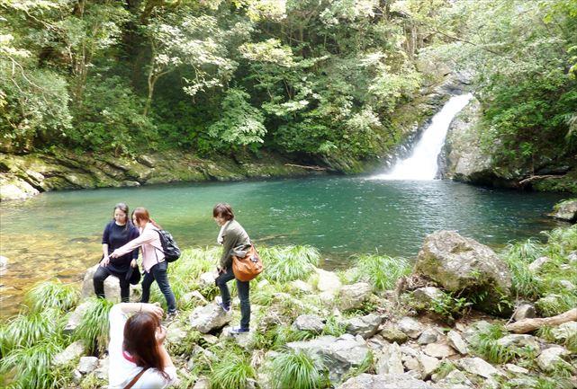 【奄美大島・カヌー&トレッキング】太陽と水がきらめく!マテリアの滝&マングローブ1日ツアー