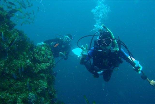 【富戸・シュノーケリング&体験ダイビング・1日】伊豆の海を満喫!シュノーケリング&体験ダイビング