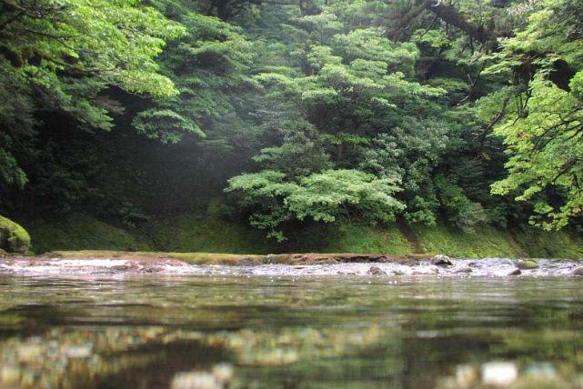 【屋久島】キャニオン・シャワークライミング淀川コース、屋久島ではめずらしいナメの沢を行く!