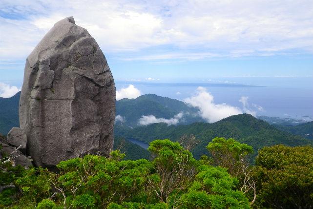 【屋久島・太忠岳・トレッキング】屋久杉原生林を抜け、スピリチュアルな太忠岳山頂へ