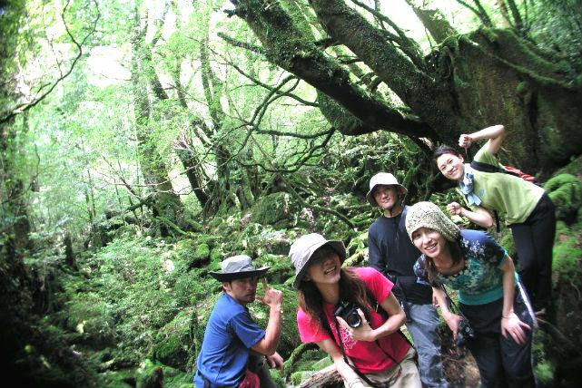 【屋久島・白谷雲水峡・トレッキング】しっとりした苔の森を歩く、白谷雲水峡トレッキング