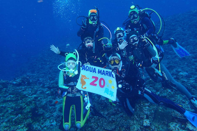 【福井・体験ダイビング】初心者向け体験ダイビング!海の世界を気軽に体験できます