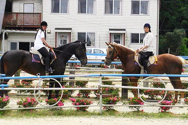 【福岡県鞍手町・乗馬体験】桜並木を駆けよう!乗馬専用の温厚な馬で初めての乗馬体験