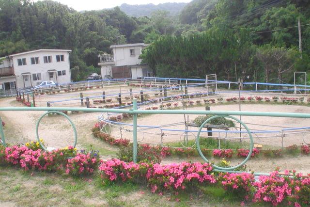 【福岡・鞍手町】時間を気にせず広い馬場で、納得いくまでマンツーマン乗馬