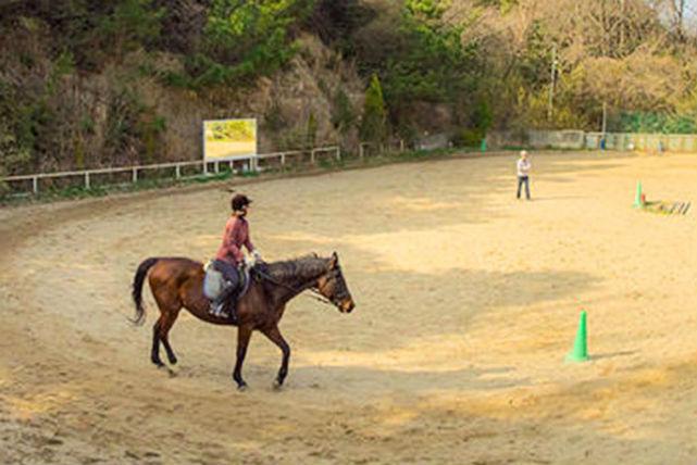 【岡山市・乗馬体験】約40分の乗馬体験。心身ともに癒やしを与えます!
