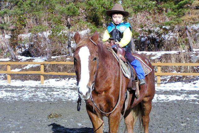 【岐阜県郡上市・乗馬体験・15分】短時間で、誰でもカウボーイになれる!ウエスタンスタイルの乗馬体験