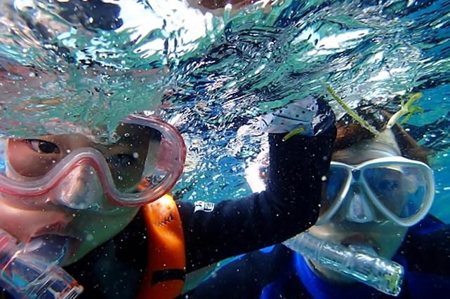 【石垣島・シュノーケリング】石垣島の美しい海であそぼう!シュノーケリング2本プラン