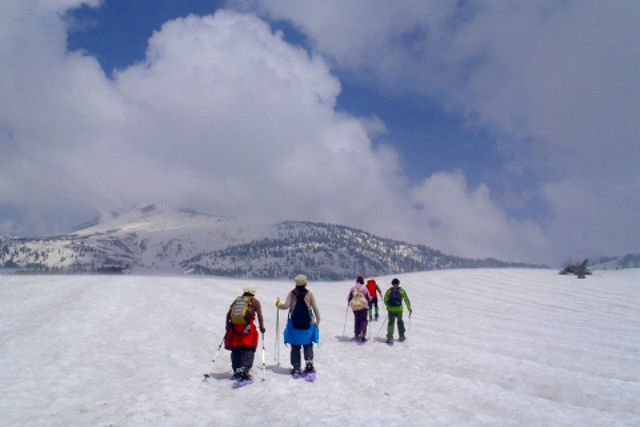 【立山・春のスノーシュー】標高2000mの立山・弥陀ヶ原でスノーウォーキング!