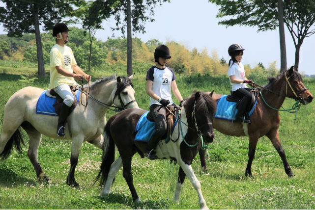 【茨城・乗馬体験】緑あふれる広大な草原の中で乗馬デビュー!