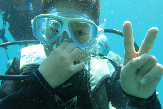 【高知・ファンダイビング・1ボート】魚礁や海中トンネルなど、見どころがいっぱいのファンダイビング