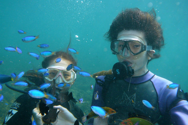 【高知・体験ダイビング】ライセンスがなくたって潜れます!四国・徳島の海で体験ダイビング